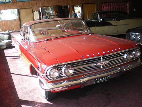 Impalas in Tekoa, WA